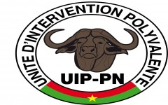 UIP-PN